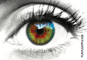 Ebola can affect iris colour even if not present in the bloodstream